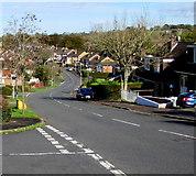 ST3090 : North along Rowan Way, Malpas, Newport by Jaggery