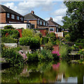 SJ9050 : Canal and back gardens at Milton, Stoke-on-Trent by Roger  Kidd
