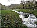 SD9163 : Gordale Beck at Janet's Foss by Ashley Dace