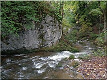 SD9163 : Limestone outcrop at Janet's Foss by Ashley Dace