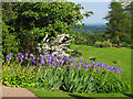 SJ2737 : Chirk Castle - lilies and a distant view by Stephen Craven