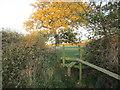 TA2144 : Stile near Rolston by Jonathan Thacker