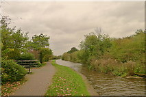 SJ8842 : Footpath turnoff to Hanford on the Trent and Mersey Canal by Tim Heaton