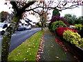 H4772 : Knockgreenan Drive, Omagh : Week 44