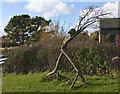 SJ2383 : A wood sculpture by Ian Greig