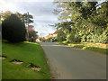 SE4460 : Main Street, Little Ouseburn by David Dixon