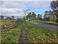 SE4561 : Bridge over Ouse Gill Beck by David Dixon