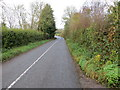 R8228 : Road (R663) from Lissanarroor to Galbally by Peter Wood
