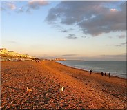 TQ3103 : Brighton Beach by Simon Carey
