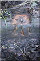 SU6984 : Benchmark on drain surround beside road by Bear Wood by Roger Templeman