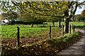 SU5730 : Roadside at Grange Farm by David Martin