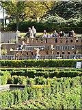 TQ3473 : Sunken Garden, Horniman Gardens by Paul Harrop