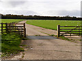 SE6082 : Cattle Grid and Track in Duncombe Park by David Dixon