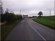 N8989 : R165 Road approaching Drumconrath by Oda Stoevesandt and Karsten Koehler