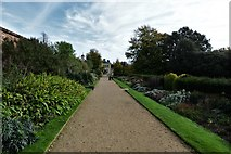 TQ1352 : Polesden Lacey: The double herbaceous borders by Michael Garlick