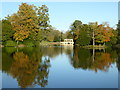 SP6737 : The Octagon Lake and the Palladian Bridge by Philip Halling
