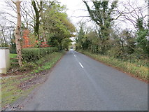 R7528 : Road (L1513) approaching Raheen (Knocklong) by Peter Wood