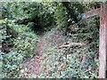 SU9212 : Bridleway to Selhurstpark Road  by Peter Holmes
