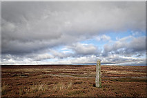 SE1767 : Standing stone, Thistle Hill, Pateley Moor by Mick Garratt