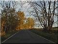 TL4538 : Royston Road, Chrishall by David Howard