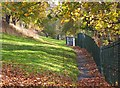 NT4936 : Path below High Road, Galashiels by Jim Barton