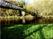 H4772 : Sandra Jones Bridge, Camowen River by Kenneth  Allen