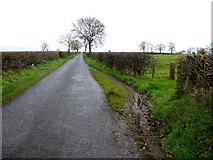 H5472 : Muddy draw-in along Roeglen Road by Kenneth  Allen