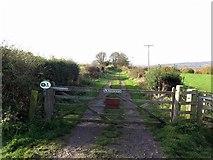 NZ1858 : West Lane near Cut Thorn Farm by Andrew Curtis