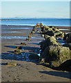 NT2975 : Remains of a Jetty by Anne Burgess