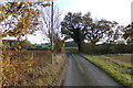 TM3668 : Pump House Lane, Sibton by Adrian Cable
