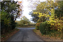 TM3669 : Pump House Lane, Sibton by Adrian Cable