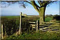SE8060 : Chalkland Way at Gatehowe Road by Ian S