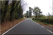 TM3569 : Pouy Street, Sibton by Geographer