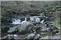 NS6179 : Lady's Linn, Campsie Glen by Richard Sutcliffe