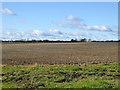 TL1155 : Field west of Colesden Road by Robin Webster