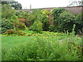 NX0942 : In the walled garden, Logan Botanic Garden by Humphrey Bolton