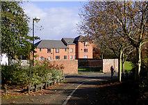 SO9596 : Footpath to Queen Street in Bilston, Wolverhampton by Roger  Kidd