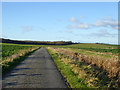 TL1781 : St. Judith's Lane by Robin Webster