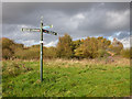 SJ3697 : Signpost on NCN62, Aintree by Stephen Craven