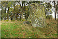 NH6842 : Druid Temple Chambered Cairn and Stone Circle by valenta