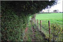 SP2225 : Path to Upper Oddington by Bill Boaden