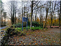 SD5476 : Dalton Hall Woodland Burial Ground by David Dixon