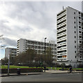 TQ3175 : High-rise blocks, Loughborough Estate, Camberwell, south London by Robin Stott