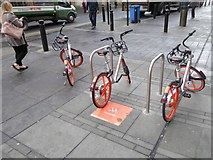 NZ2463 : Mobikes have hit the Toon by Oliver Dixon