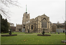 TL7006 : Chelmsford Cathedral by John Salmon