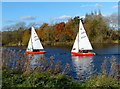 SK6038 : Sailing boats on the River Trent by Mat Fascione