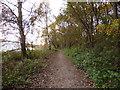 SJ6566 : Whitegate Way parallel to Bradford Road by Stephen Craven