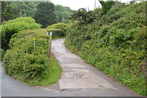 SX5148 : Erme - Plym Trail by N Chadwick