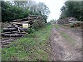 SU9111 : Wood stacked by bridleway by Peter Holmes
