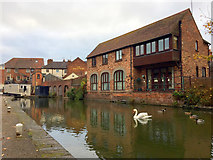SO8554 : Worcester and Birmingham Canal by John Allan